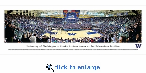 Washington Huskies Basketball - Panoramic Photo (13.5 x 40)