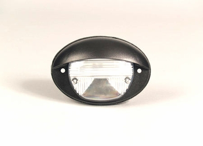 LED Stepwell Light