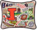 Catstudio Handmade University Of Illinois Embroidered Pillow