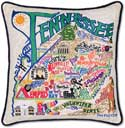 Giant Handmade Tennessee Embroidered Geography Pillow