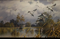 ADAMSON:  AUTUMN LEGACY - PINTAILS</a><br><b>- SOLD</b>