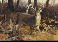 CARLSON:  WHITETAIL DEER</a><br><b>- SOLD</b>