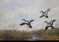 CLARK:  THREE WIDGEON</a><br><b>- SOLD</b>