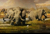 "HACKING: ELEPHANTS AND EGRETS</a> <img src=""http://edit.store.yahoo.com/I/yhst-53343112752519_1792_1103024"">"