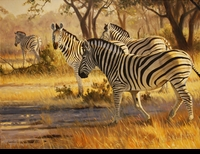 "HACKING: ZEBRAS</a> <img src=""http://edit.store.yahoo.com/I/yhst-53343112752519_1792_1103024"">"