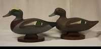 "JOBES: WIDGEON PAIR</a> <img src=""http://edit.store.yahoo.com/I/yhst-53343112752519_1792_1103024"">"