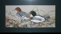 "LAMAY: RED-BREASTED MERGANSERS</a> <img src=""http://edit.store.yahoo.com/I/yhst-53343112752519_1792_1103024"">"