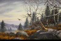 "MAASS: RUFFED GROUSE</a> <img src=""http://edit.store.yahoo.com/I/yhst-53343112752519_1792_1103024"">"