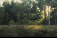 MONROE:  MORNING LIGHT</a><br><b>- SOLD</b>