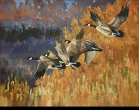 "ST. CLAIR: FOUR CANADA GEESE</a> <img src=""http://edit.store.yahoo.com/I/yhst-53343112752519_1792_1103024"">"