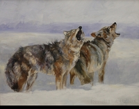 "ST. CLAIR: HOWLING WOLVES</a> <img src=""http://edit.store.yahoo.com/I/yhst-53343112752519_1792_1103024"">"