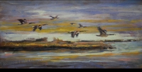 "WATKINS: CANADA GEESE</a> <img src=""http://edit.store.yahoo.com/I/yhst-53343112752519_1792_1103024"">"