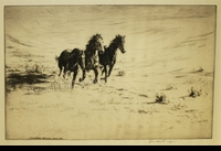 WEST:  WILD HORSES</a><br><b>- SOLD</b>