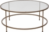 Astoria Collection Glass Coffee Table with Matte Gold Frame [NAN-JN-21750CT-GG]