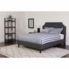 Brighton Tufted Upholstered Twin Size Platform Bed in Dark Gray Fabric [SL-BK4-T-DG-GG]