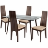 Concord 5 Piece Espresso Wood Dining Table Set with Glass Top and Padded Wood Dining Chairs [ES-148-GG]