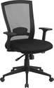 Mid-Back Black Mesh Executive Swivel Chair with Back Angle Adjustment and Adjustable Arms [HL-0004K-GG]