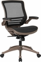Mid-Back Transparent Black Mesh Executive Swivel Chair with Melrose Gold Frame and Flip-Up Arms [BL-8801X-GG]
