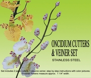 ONCIDIUM ORCHID CUTTER (DANCING LADY)