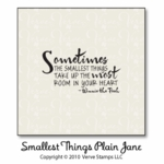 Smallest Things Plain Jane