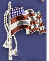 Parade Flag Pin