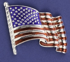 Waving Old Glory Pin