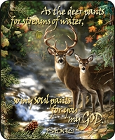 Deer Scripture Luxury Throw