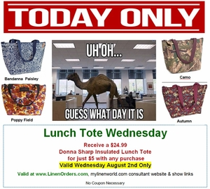 $5 Donna Sharp Lunch Tote Wednesday