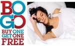 Feather Pillows Buy One /  Get One FREE (Standard / Queen)