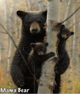 Mama & Baby Bears Throw Blanket