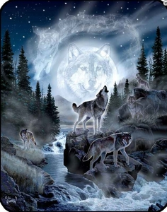 Moon Wolf Luxury Blanket