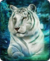 White Tiger Luxury Blanket