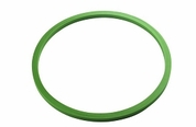 Sterilizer Door Gaskets and Seals