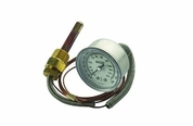 Thermostat And Temperature Gauge