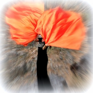 Fire Orange Iridescent Solid Power Wind Worship Flags with Flexible Rods (2)