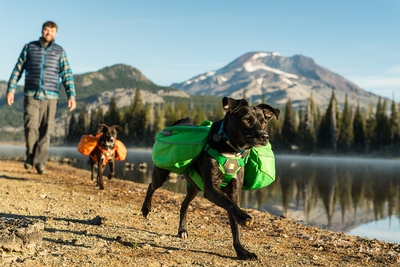 2017 Ruffwear Approach Pack