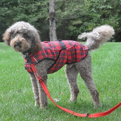 Alpine Flannel Dog Coat