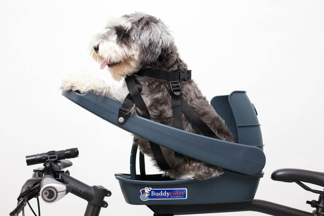 Buddyrider Dog Bicycle Seat Safety Dog Bike Seat For