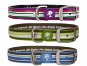 Dublin Dog Waterproof Collars - Stripes