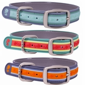 Dublin Dog Waterproof Collars - Wild Flowers