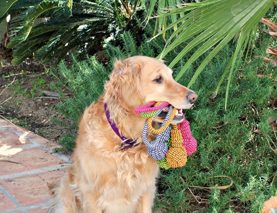 Knotted Ball Dog Rope Toys