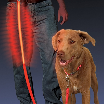Nite Ize Nite Dawg LED Light Up Leash