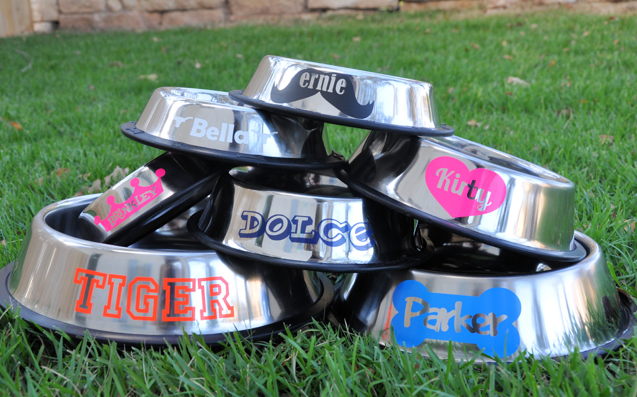 Personalized Stainless Steel Dog Bowls Customize Your