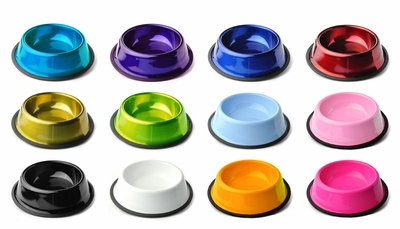 Powder Coated Colored Stainless Steel Dog Bowls