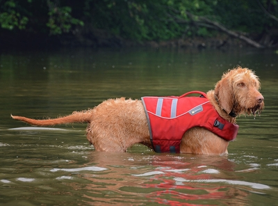 RuffWear K9 Float Coat