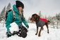Ruffwear Powder Hound Winter Jacket