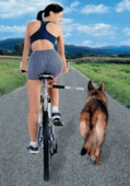Using a Dog Bicycle Leash
