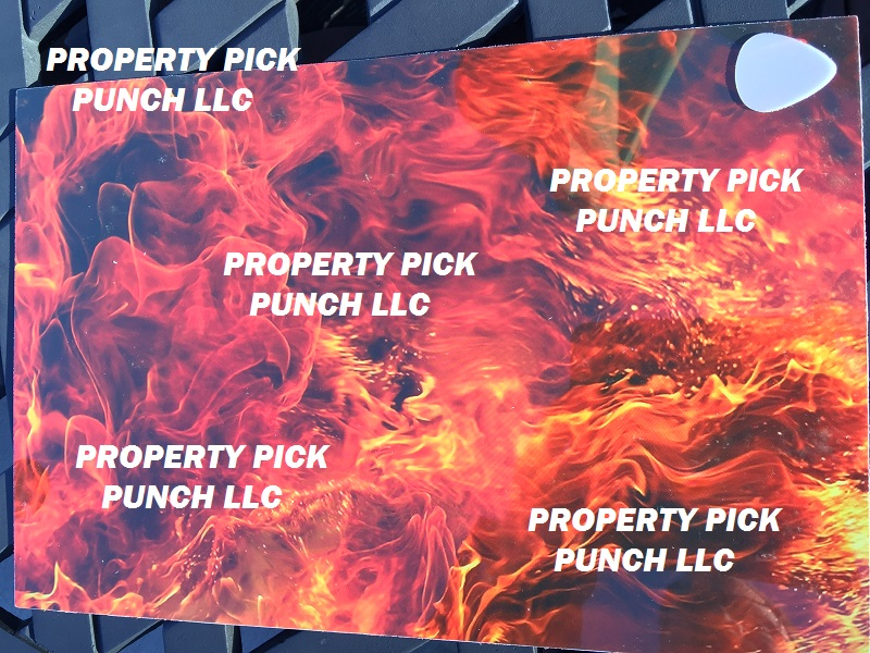 NEW!!! Pick Punch Printed plastic sheets 8 in X12in PVC