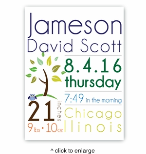 Baby Boy Announcement Canvas Sign - click to enlarge
