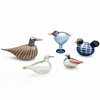 iittala Toikka Minneapolis Bird